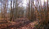 Trail On foot VIEUX-MOULIN - en forêt de Compiègne_23_la Grotte des Ramoneurs_le Mont Berny - Photo 91