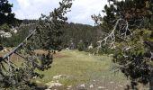 Trail Walk LES ANGLES - balade des 12 lacs  depuis le lac de bouilloires  - Photo 23