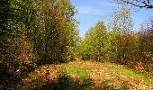 Randonnée Marche LONGPONT - en forêt de Retz_77_Longpont_Puiseux en Retz_AR - Photo 4