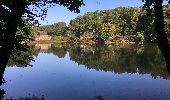 Randonnée Trail NEANT-SUR-YVEL - Autour des étangs à partir du gîte de tante Phonsine - Photo 9