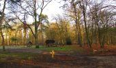 Trail On foot VIEUX-MOULIN - en forêt de Compiègne_23_la Grotte des Ramoneurs_le Mont Berny - Photo 132