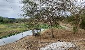 Randonnée Marche Guayaquil - trail along a Rio close to the lake - Photo 2