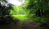 Randonnée Marche COYOLLES - en forêt de Retz_78_les rayons du Rond Capitaine - Photo 143
