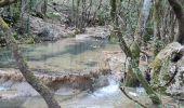 Randonnée Marche PLAN-D'AUPS-SAINTE-BAUME - source Huveaune, chemin des rois - Photo 9