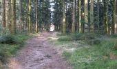Trail Walk ECROMAGNY - 16-02-20 Ecromagny : circuit Epoissets + étangs de la Chaussée - Photo 7