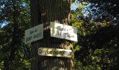 Trail Walk DAMPLEUX - en forêt de Retz_80_sur la Route Tortue et la Route Droite - Photo 128