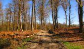 Randonnée A pied VILLERS-COTTERETS - le GR11A  dans la Forêt de Retz  - Photo 66