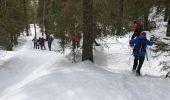Randonnée Raquettes à neige DIVONNE-LES-BAINS - La Dole alt 1676m en raquette - Photo 11
