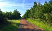 Randonnée Marche COYOLLES - en forêt de Retz_78_les rayons du Rond Capitaine - Photo 126