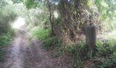Trail Walk Gesves - 20190701 Strud - Photo 7