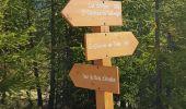 Randonnée Marche SAINT-ETIENNE-DE-TINEE - col d'anelle - Photo 6