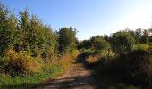 Trail Walk DAMPLEUX - en forêt de Retz_80_sur la Route Tortue et la Route Droite - Photo 97