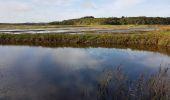 Randonnée Marche MESQUER - la pointe de Merquel à marée basse - Photo 10