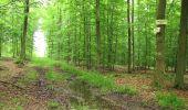 Randonnée A pied VILLERS-COTTERETS - le GR11A  dans la Forêt de Retz  - Photo 90