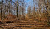 Trail Walk PIERREFONDS - en forêt de Compiègne_24_Tournantes sur le Voliard et sur la Fortelle_chaussée Brunehaut - Photo 130