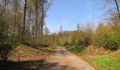 Randonnée A pied VILLERS-COTTERETS - le GR11A  dans la Forêt de Retz  - Photo 83