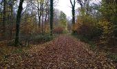 Trail Walk SENTHEIM - Sentheimtour Covid série 2 bis - Photo 11
