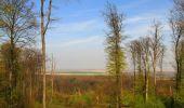 Randonnée Marche LONGPONT - en forêt de Retz_77_Longpont_Puiseux en Retz_AR - Photo 18