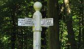 Trail Walk RETHEUIL - en forêt de Retz_76_dans les forêts de Retz et de Compiègne - Photo 77