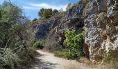 Randonnée V.T.T. NARBONNE - NARBONNE-Plage ... vers les étangs