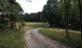 Randonnée Marche Havelange - Bois, Rivière et champs - Photo 15