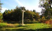 Randonnée Marche SAINT-JEAN-AUX-BOIS - en forêt de Compiègne_21_la Muette_les Clavières_la Brévière - Photo 85
