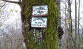 Trail Walk MUHLBACH-SUR-BRUCHE - Muhlbach sur Bruche - Photo 1