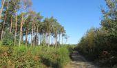 Randonnée Marche Andenne - seilles wanheriffe 4,75 km - Photo 1