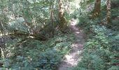 Randonnée Marche Yvoir - RB3 : GRP125 GR126 et GR129 - Photo 5