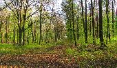 Randonnée Marche LONGPONT - en forêt de Retz_77_Longpont_Puiseux en Retz_AR - Photo 130