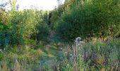 Trail Walk DAMPLEUX - en forêt de Retz_80_sur la Route Tortue et la Route Droite - Photo 93