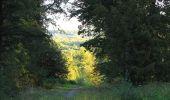 Trail Walk DAMPLEUX - en forêt de Retz_80_sur la Route Tortue et la Route Droite - Photo 1