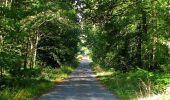 Trail Walk DAMPLEUX - en forêt de Retz_80_sur la Route Tortue et la Route Droite - Photo 236
