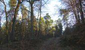Trail Walk SAINT-JEAN-AUX-BOIS - en forêt de Compiègne_33_12_2019_les Tournantes de l'étang Saint-Jean et des Prés Saint-Jean - Photo 140