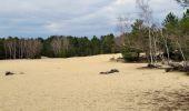 Randonnée Marche NOISY-SUR-ECOLE - Boucle les trois pignons Fontainebleau - Photo 5