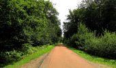 Randonnée Marche HARAMONT - en forêt de Retz_79_08_2019_vers Taillefontaine et Retheuil par les lisières - Photo 103