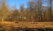 Trail Walk PIERREFONDS - en forêt de Compiègne_24_Tournantes sur le Voliard et sur la Fortelle_chaussée Brunehaut - Photo 90