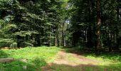 Randonnée Marche HARAMONT - en forêt de Retz_79_08_2019_vers Taillefontaine et Retheuil par les lisières - Photo 123