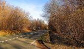 Trail On foot VIEUX-MOULIN - en forêt de Compiègne_23_la Grotte des Ramoneurs_le Mont Berny - Photo 2