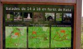 Randonnée Marche LONGPONT - en forêt de Retz_77_Longpont_Puiseux en Retz_AR - Photo 16