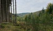 Randonnée Marche La Roche-en-Ardenne - Ramee  - Photo 4