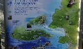 Randonnée Marche LES ANSES-D'ARLET - cap salomon - Photo 10
