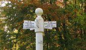 Randonnée Marche SAINT-JEAN-AUX-BOIS - en forêt de Compiègne_32_11_2019_les Tournantes de la Muette et sous la Tête Saint-Jean - Photo 129