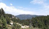 Trail Walk LES ANGLES - balade des 12 lacs  depuis le lac de bouilloires  - Photo 25