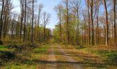 Randonnée Marche LONGPONT - en forêt de Retz_77_Longpont_Puiseux en Retz_AR - Photo 63