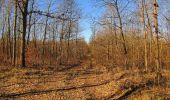 Trail Walk PIERREFONDS - en forêt de Compiègne_24_Tournantes sur le Voliard et sur la Fortelle_chaussée Brunehaut - Photo 16