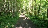 Trail Mountain bike CHANTECOQ - La Clery à partir de Chantecoq - Photo 2
