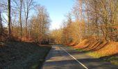 Trail Walk SAINT-JEAN-AUX-BOIS - en forêt de Compiègne_33_12_2019_les Tournantes de l'étang Saint-Jean et des Prés Saint-Jean - Photo 203