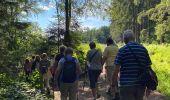 Randonnée Marche Jalhay - Sart - Photo 12