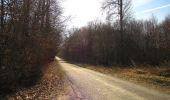 Trail On foot VIEUX-MOULIN - en forêt de Compiègne_23_la Grotte des Ramoneurs_le Mont Berny - Photo 29